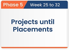Projects Until Placements