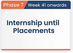 Internship until Placements